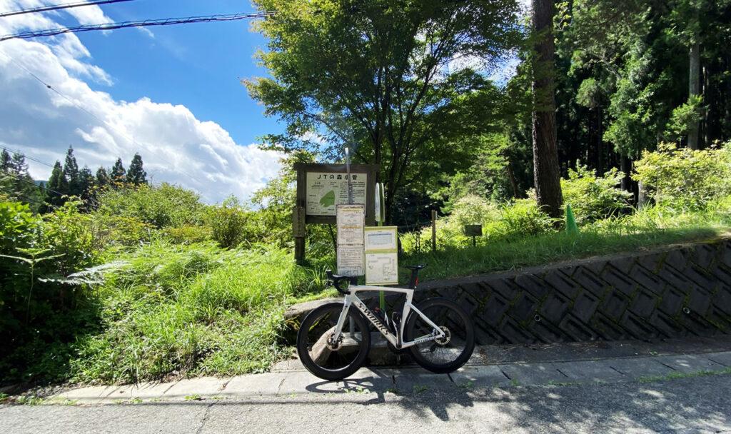 こっそり鶴峠に練習行ってきましたの