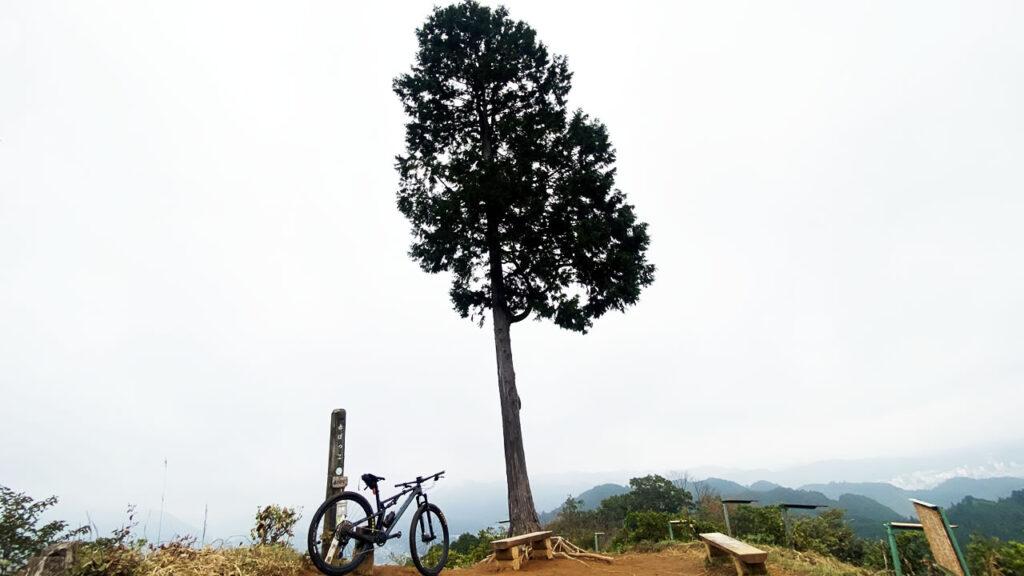 自転車で出会った、東京屈指の絶景スポット