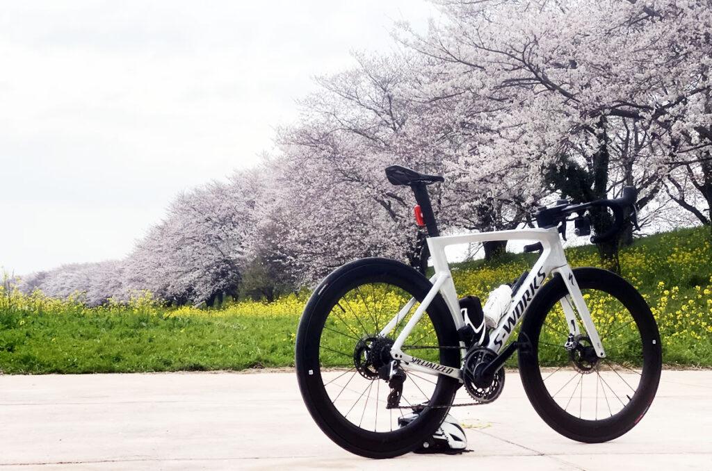 吉見町のさくら堤公園へお花見サイクリング!