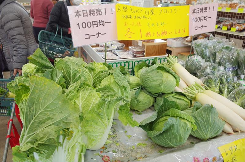 白菜やキャベツも100円
