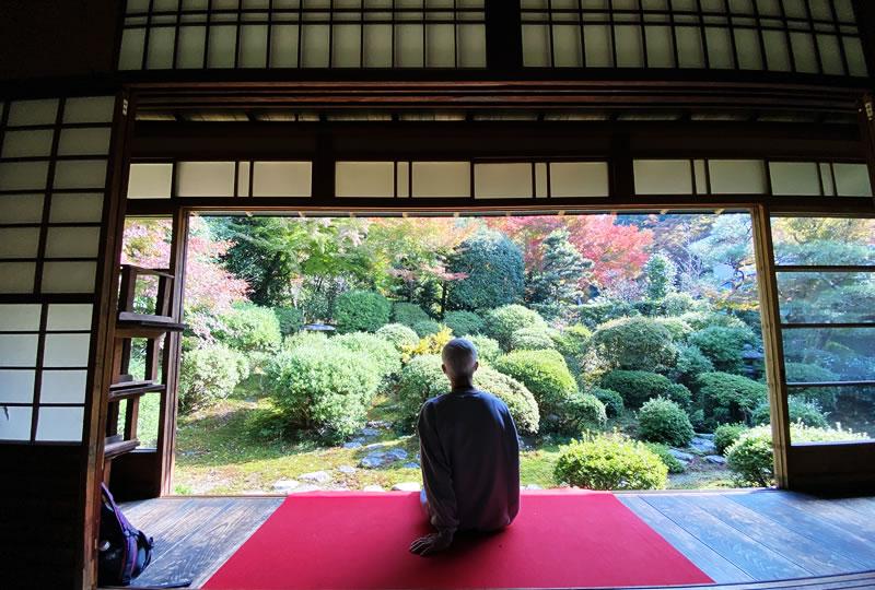 庭園からの眺めを独り占めできる安楽寺