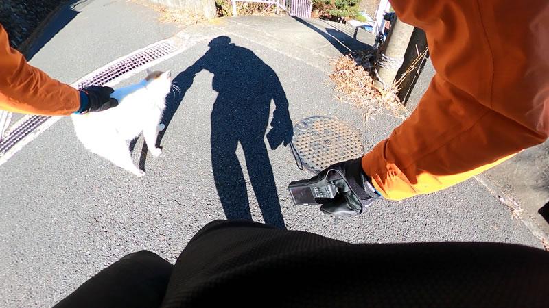 奥多摩むかし道で猫と出会う