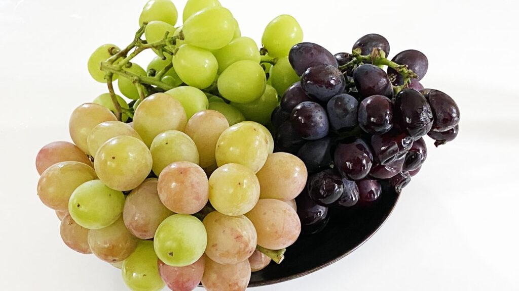 松乃園で梨の代わりにブドウを大量ゲット!