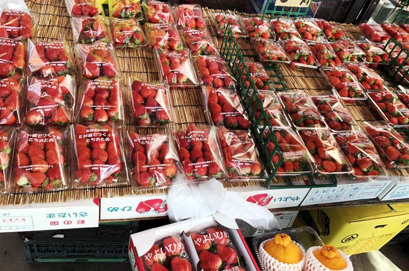 今が旬のイチゴがずらり