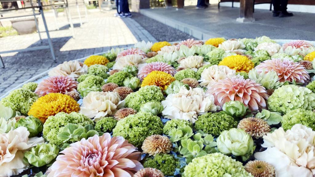 八幡神社の花手水