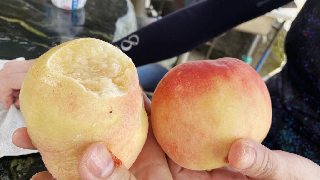 桃が丸ごと1個試食(◎_◎;)