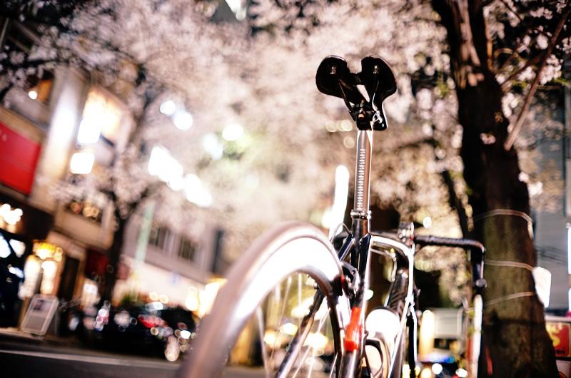 ロードバイクで仕事帰りに花見!