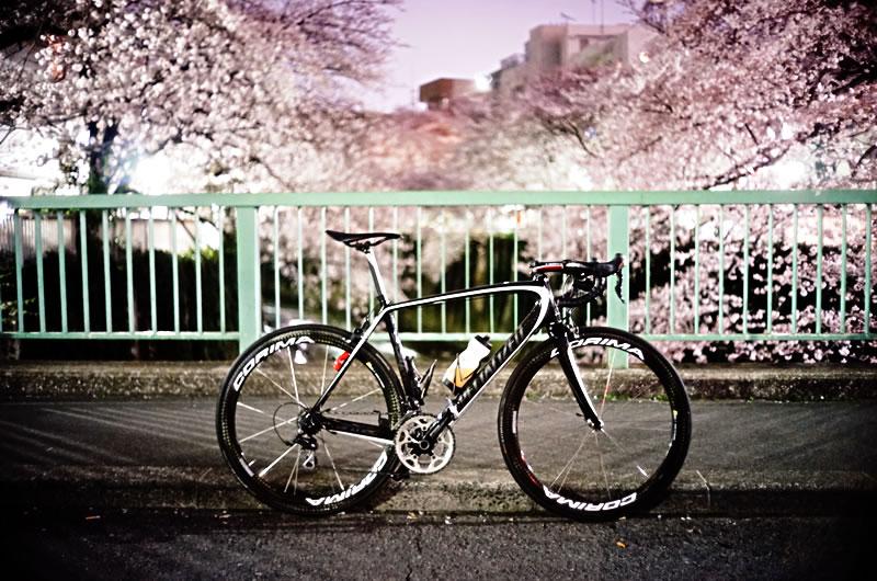 ロードバイクと写真の季節がやってまいりました!