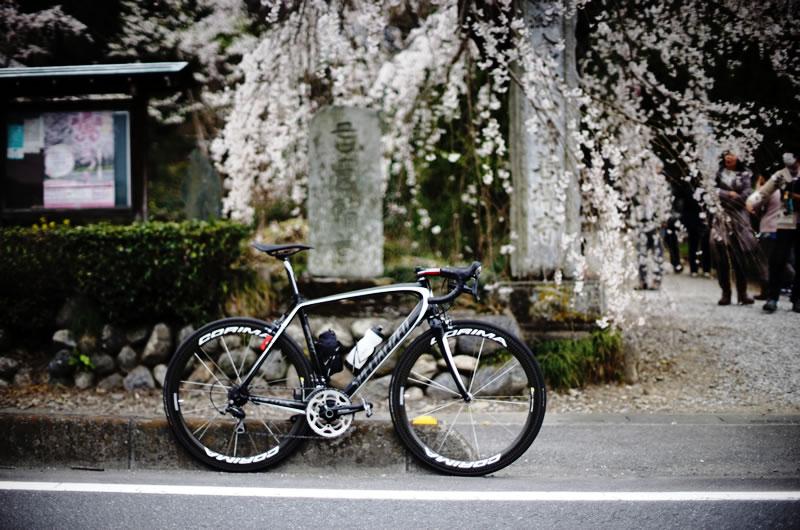 """2016年""""オレの""""サイクルロードレース"""