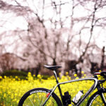 秩父・小鹿野町をロードバイクで堪能してきた!
