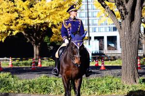 警視庁の騎馬隊