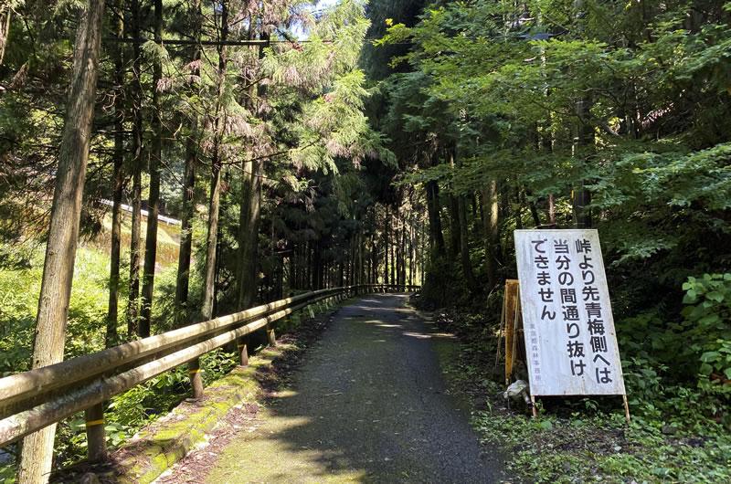 梅野木峠の林道に入るとさらに斜度がきつくなる