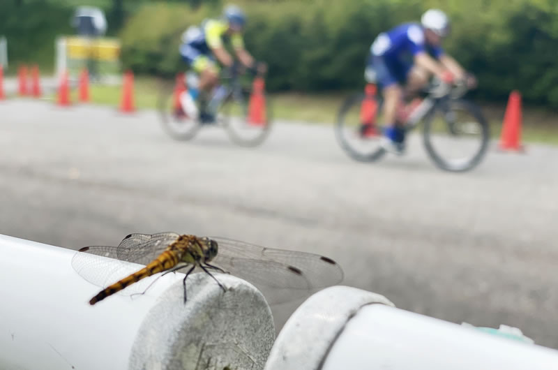 Withコロナの自転車イベントの在り方を問うJBCF東日本ロードクラシック群馬大会