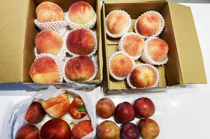 桃とプラムを大人買い!