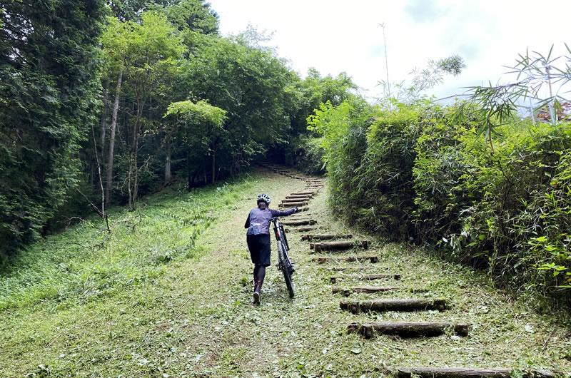 小道の先には、果てしなく階段が続いていた