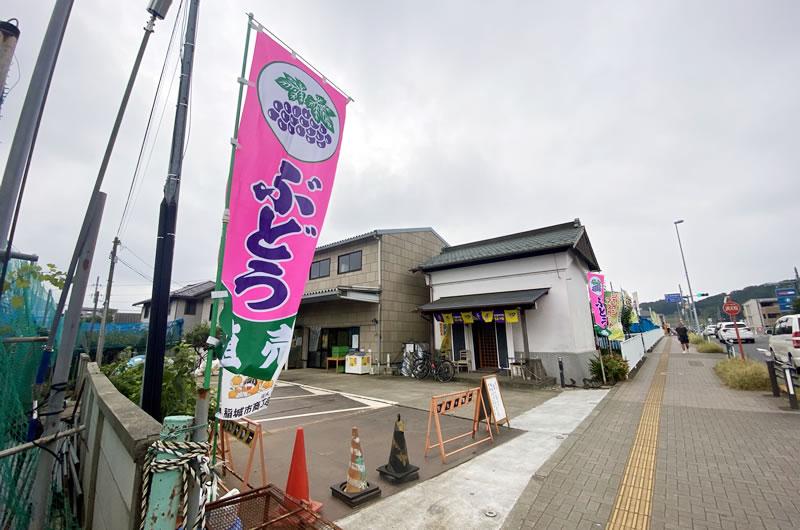 松之園はV坂のすぐ手前にある直売所