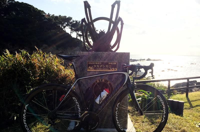 荒崎公園のマイルストーン<タカアシガニ>をゲット!