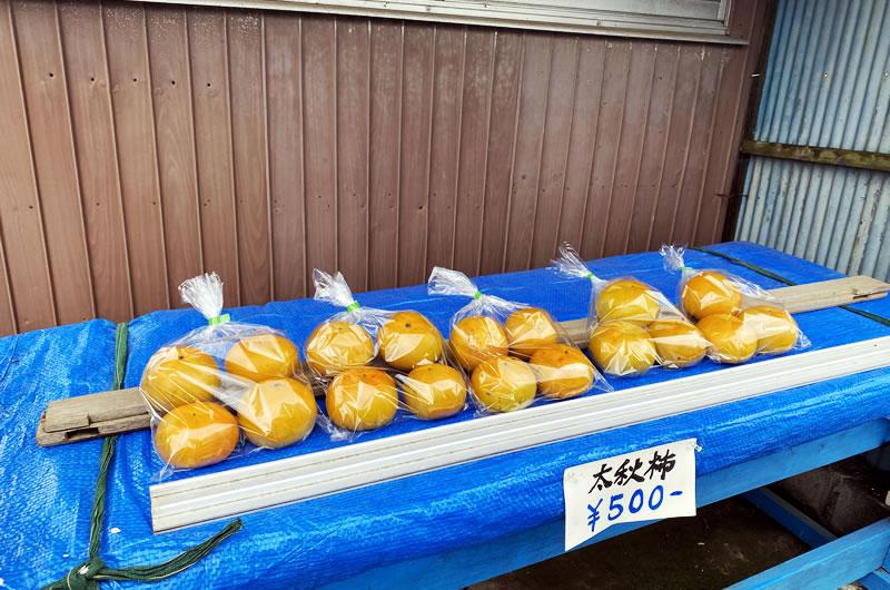 太秋柿なる大きな柿もゲット!