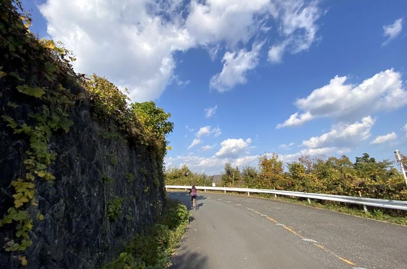 頑張ればヒルクライムもできるけど、山や遠乗りはロードバイクのほうが楽