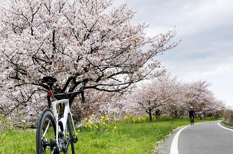 MTBで学ぶ自転車の必須スキル