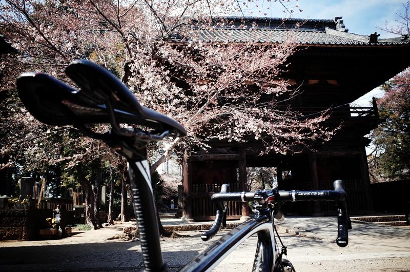 鴻巣の寺院とターマック