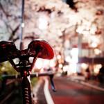 スペシャライズドターマックと渋谷の夜桜
