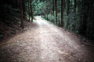 山猫軒手前の未舗装の道
