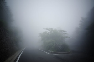霧に覆われたヤビツ峠