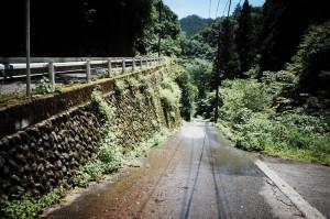 風張林道入口までの坂、斜度12%なり