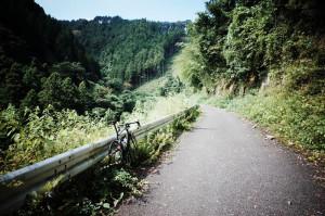 入山峠の道は少々瓦礫多し