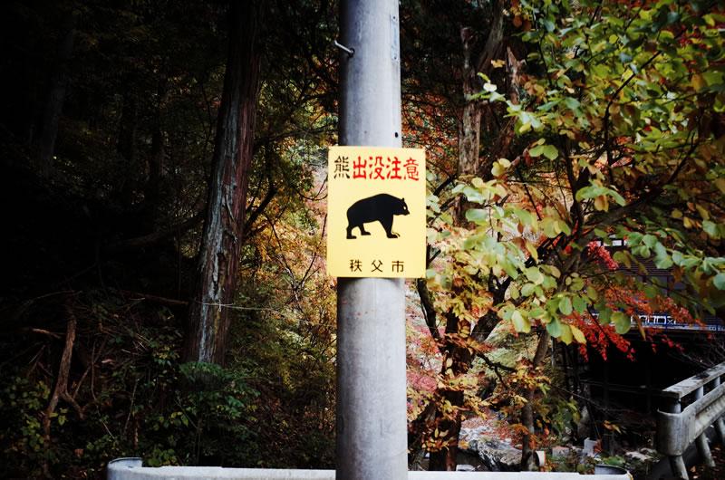 奥秩父はクマなどの動物に注意が必要かも