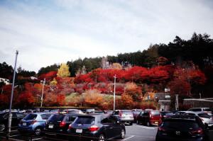 紅葉がきれいな三峰神社
