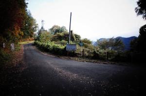 林道西秩父線の眺望