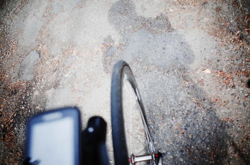 月夜野坂の道はちょっと荒れています