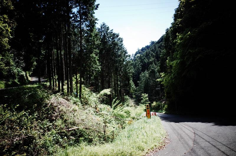 奥武蔵グリーンラインは坂もそれほどキツくない