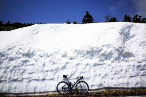 2016年の雪の壁@渋峠