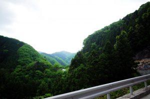 峠の向こうに続く道が見えます。。