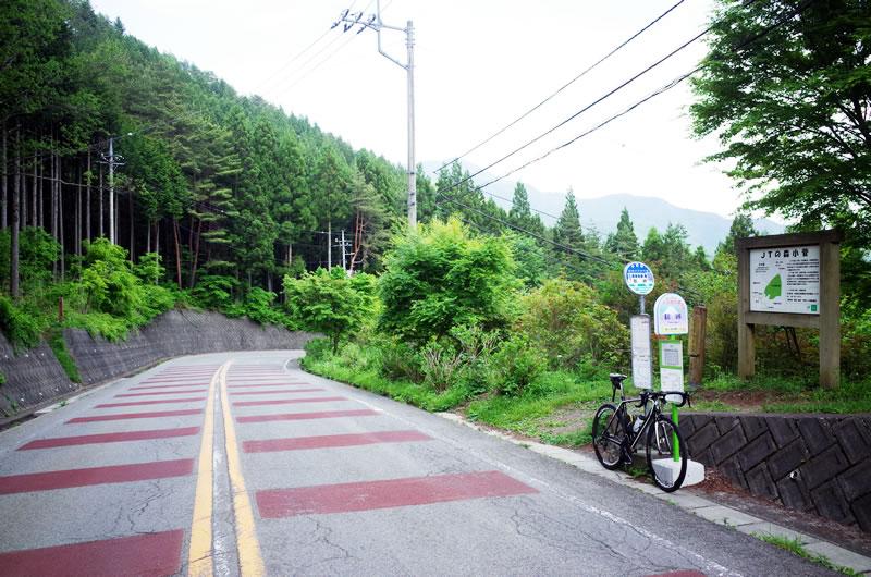 心折れながら、何とか鶴峠をクリア!