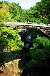 日本三奇橋・猿橋を観光したり