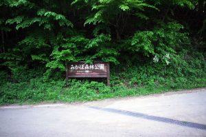 塩沢峠付近。森林公園があるらしい
