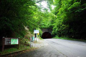 天城のトンネルを抜けると下田へ・・・