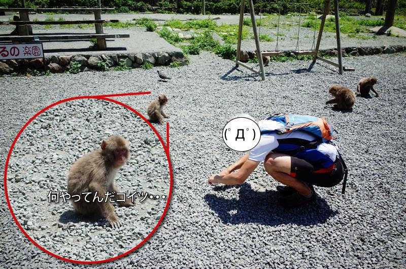 波勝崎苑で仲間と再会(´_ゝ`)