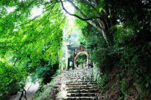 趣のある竹寺