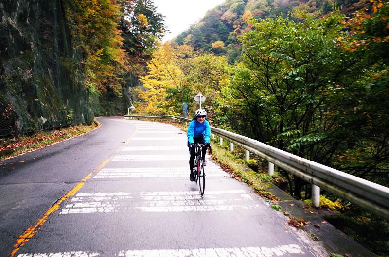 久しぶりのサイクリングでデゲンコさんもご満悦