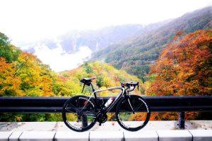 上日川峠は紅葉真っ盛り!