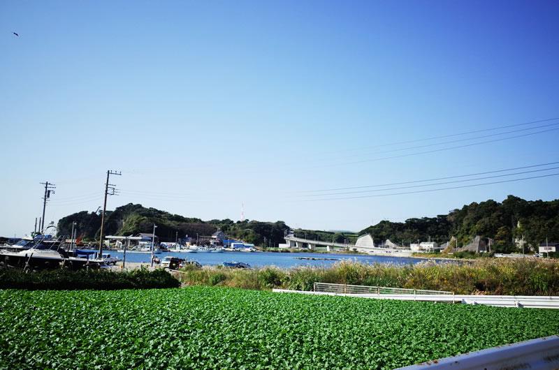 宮川公園手前には長い坂があるが・・・
