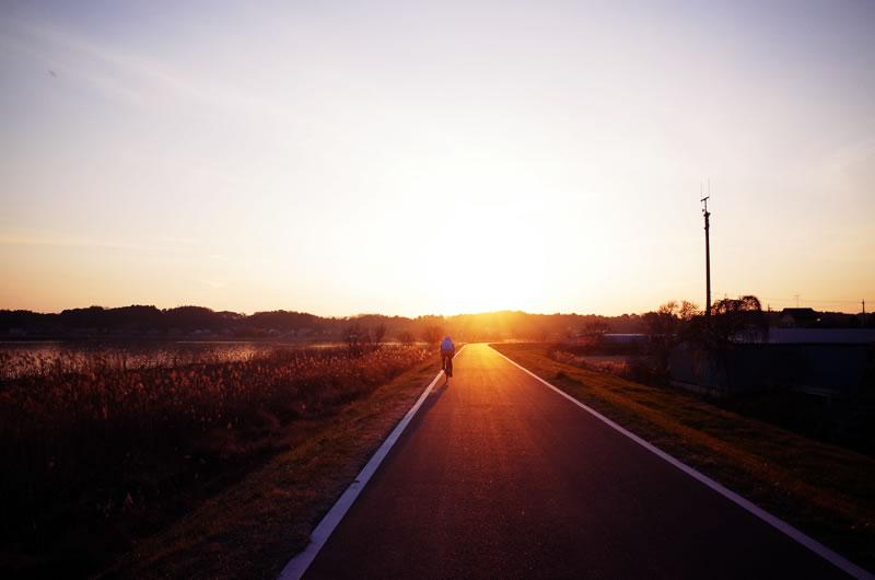 夕日に向かって走るデゲンコさん