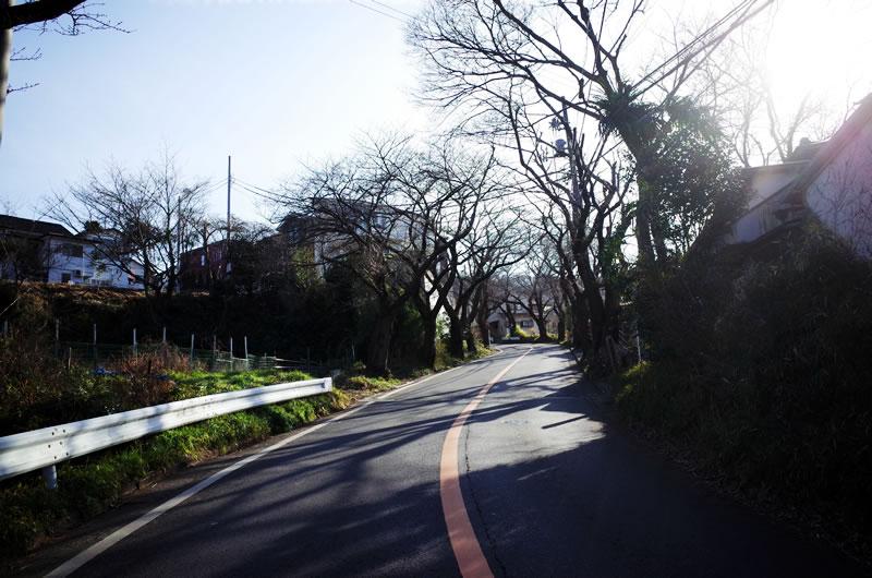 住宅街に有るまじき坂