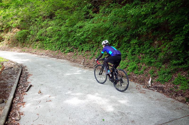 坂は小刻みに斜度が変化し、案外インターバルがかかる