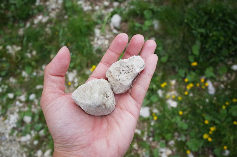 海の名残がある石灰岩